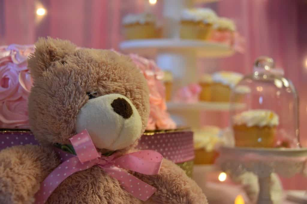 Teddy Bear Baby Shower Party Supplies