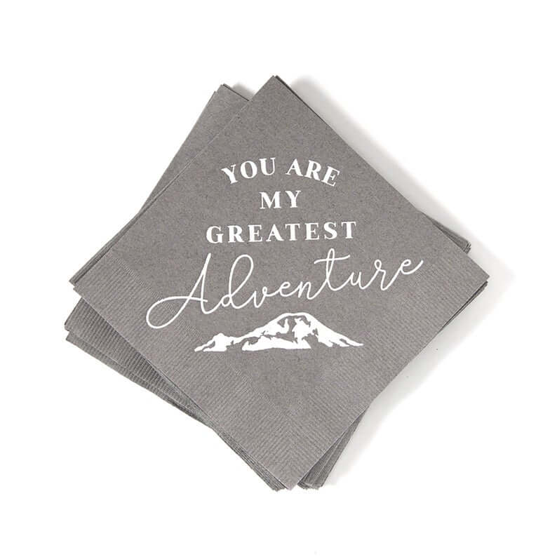 Party Napkins - You Are My Greatest Adventure