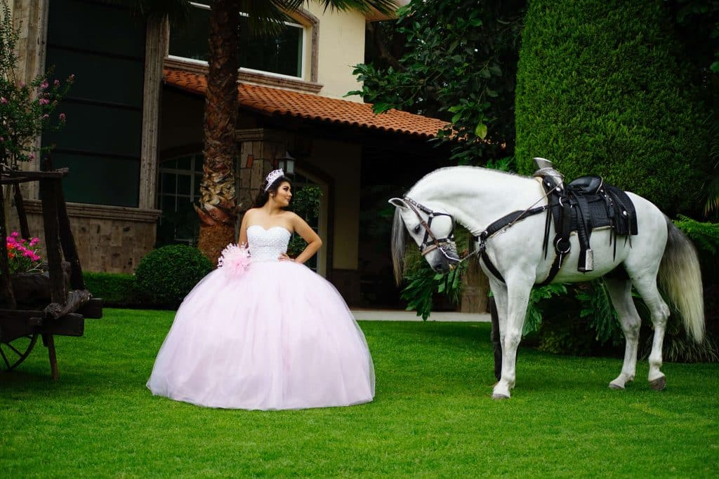 How to Use our Quinceañera Checklist